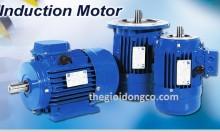 Động cơ điện Ucan